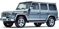 G-W463 de 1989 à ....